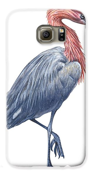 Reddish Egret Galaxy S6 Case by Anonymous