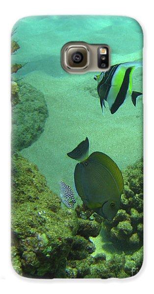 Reef Life Galaxy S6 Case