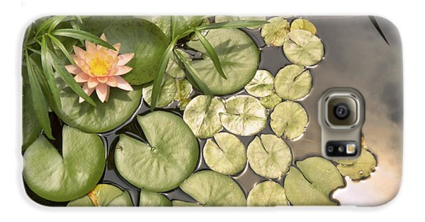 Reflected Light Upon Flowering Water Lilies Galaxy S6 Case