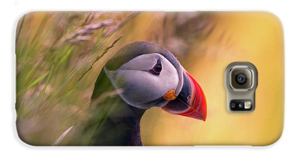 Puffin Galaxy S6 Case - Resting Puffin by Bj?rn A Hveding