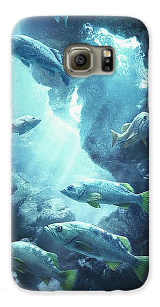 Rockfish Sanctuary Galaxy S6 Case by Javier Lazo