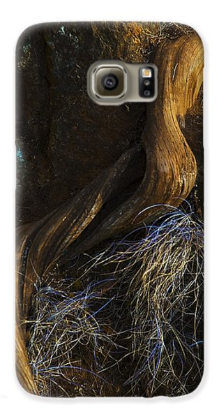 Tree Root Galaxy S6 Case