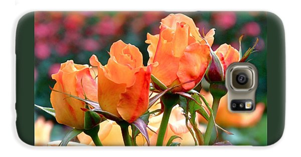 Rose Bunch Galaxy S6 Case by Rona Black