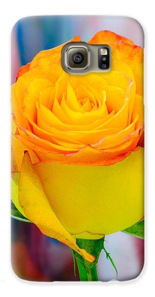 Yellow Rose Macro Galaxy S6 Case