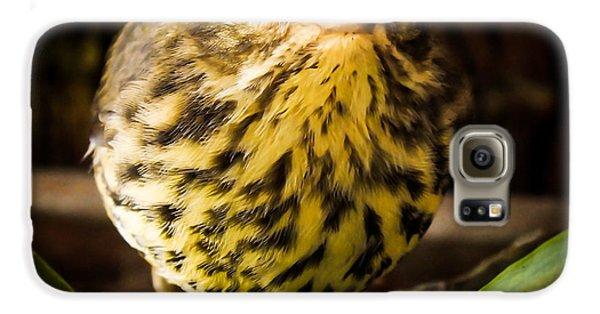 Round Warbler Galaxy S6 Case
