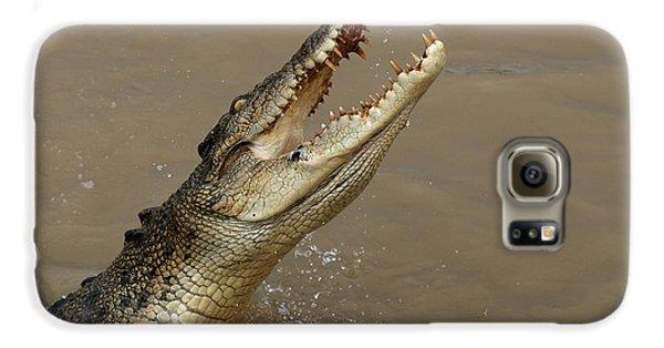 Salt Water Crocodile Australia Galaxy S6 Case by Bob Christopher