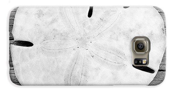 Sand Dollar Galaxy S6 Case