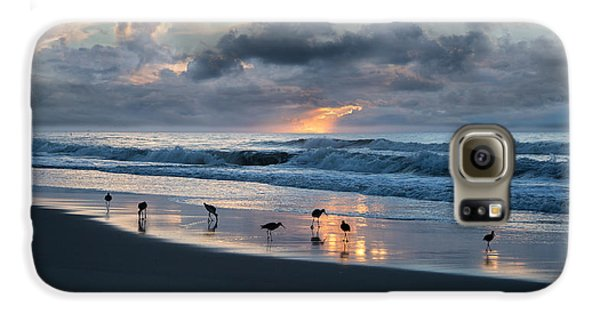 Sandpipers In Paradise Galaxy S6 Case by Betsy Knapp