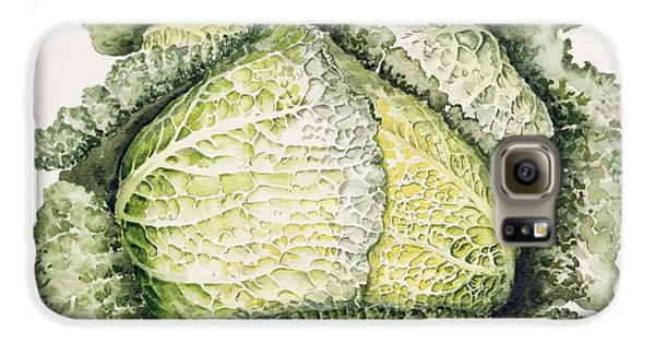 Savoy Cabbage  Galaxy S6 Case by Alison Cooper
