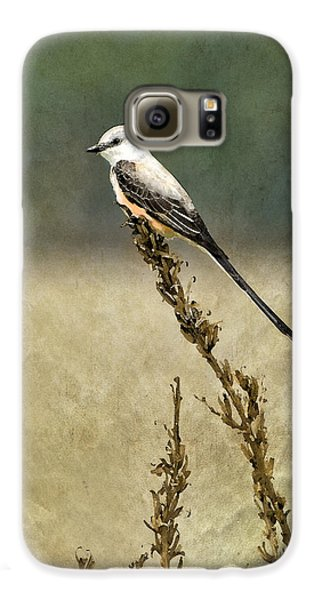 Scissortailed-flycatcher Galaxy S6 Case