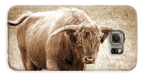 Galaxy S6 Case featuring the photograph Scottish Highlander Bull by Karen Shackles