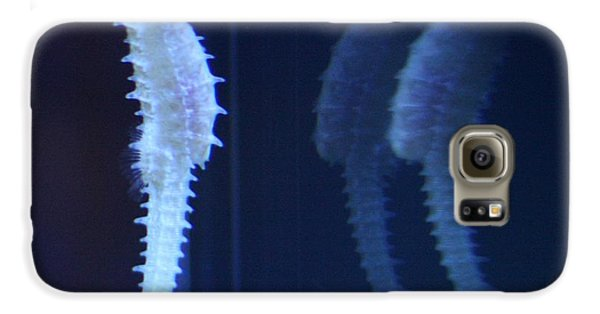 Seaing Double Galaxy S6 Case by Nathan Rupert