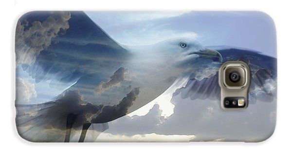 Searching The Sea - Seagull Art By Sharon Cummings Galaxy S6 Case by Sharon Cummings