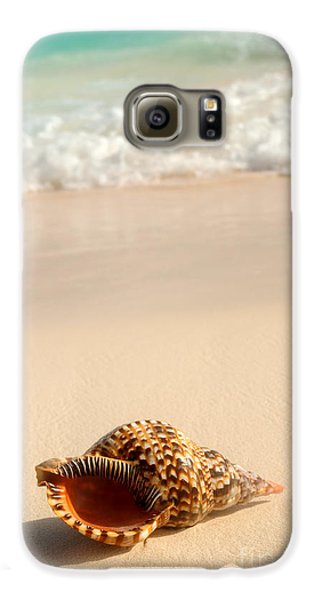 Seashell And Ocean Wave Galaxy S6 Case