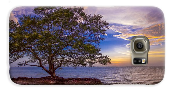Mangrove Galaxy S6 Case - Seeing Is Believing by Marvin Spates