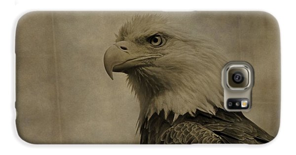 Sepia Bald Eagle Portrait Galaxy S6 Case by Dan Sproul