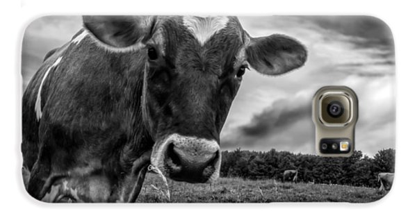 Cow Galaxy S6 Case - She Wears Her Heart For All To See by Bob Orsillo