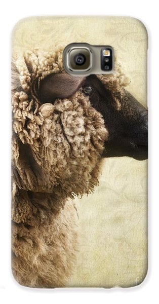 Sheep Galaxy S6 Case - Side Face Of A Sheep by Priska Wettstein
