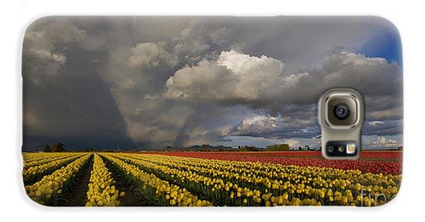 Skagit Valley Storm Galaxy S6 Case