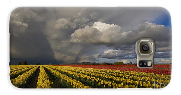 Skagit Valley Storm Galaxy S6 Case by Mike Reid