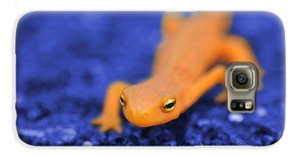 Sly Salamander Galaxy S6 Case by Luke Moore
