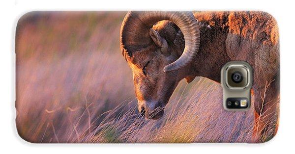 Animals Galaxy S6 Case - Smell The Wind by Kadek Susanto