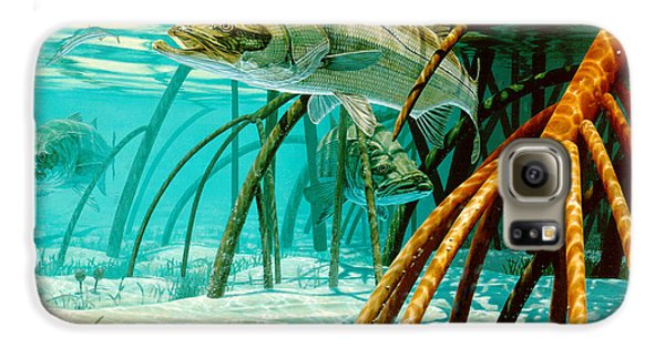 Mangrove Galaxy S6 Case - Snook In The Mangroves by Don  Ray