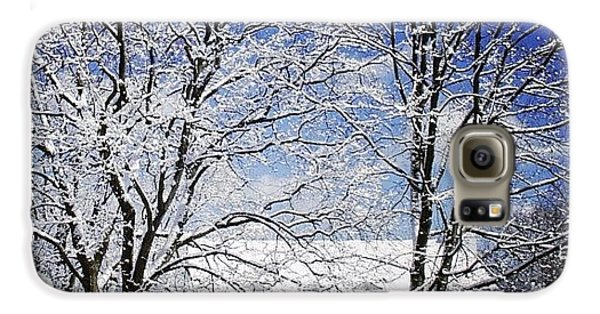 Sunny Galaxy S6 Case - #snow #winter #house #home #trees #tree by Jill Battaglia
