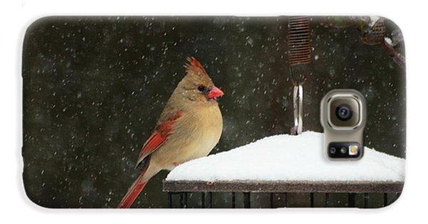 Snowy Cardinal Galaxy S6 Case by Benanne Stiens