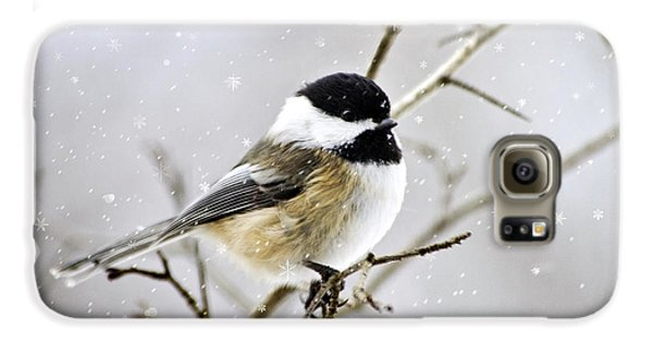 Snowy Chickadee Bird Galaxy S6 Case by Christina Rollo