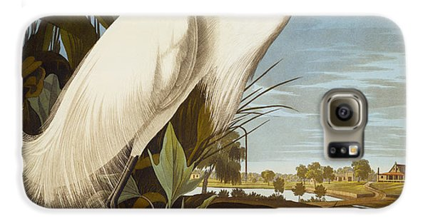 Snowy Heron Or White Egret Galaxy S6 Case by John James Audubon