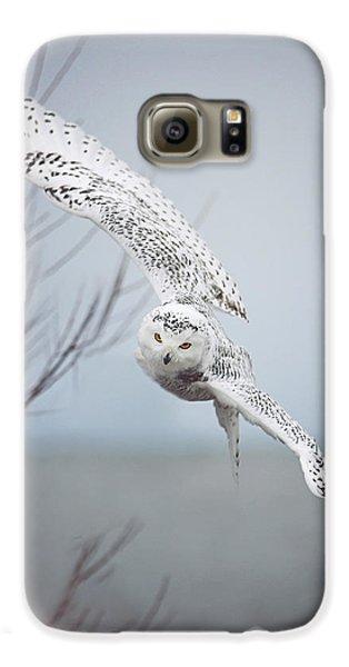 Owl Galaxy S6 Case - Snowy Owl In Flight by Carrie Ann Grippo-Pike