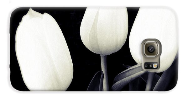 Bright Galaxy S6 Case - Soft And Bright White Tulips Black Background by Matthias Hauser