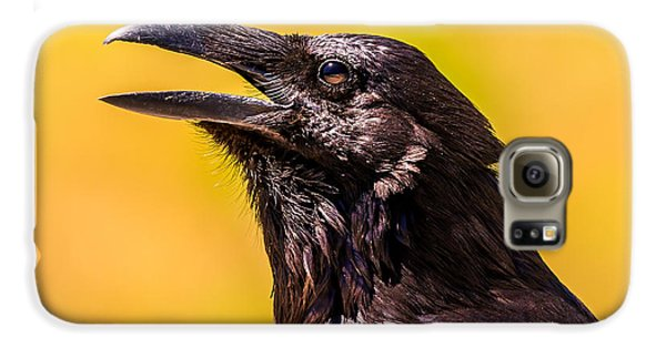 Song Of The Raven Galaxy S6 Case