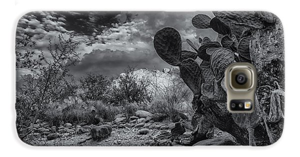 Galaxy S6 Case featuring the photograph Sonoran Desert 15 by Mark Myhaver