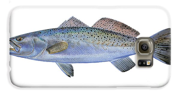 Drum Galaxy S6 Case - Speckled Trout by Carey Chen
