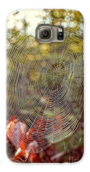 Spider Web Galaxy S6 Case by Edward Fielding