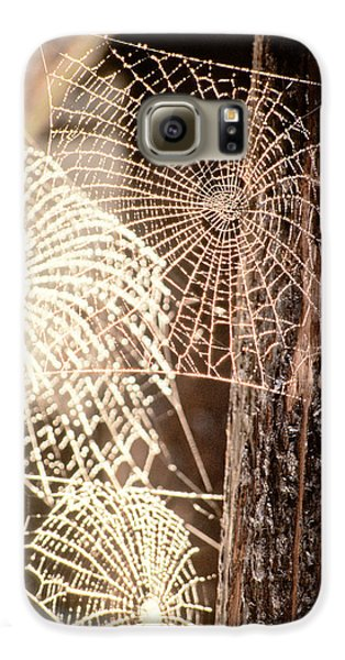 Spider Webs Galaxy S6 Case by Anonymous