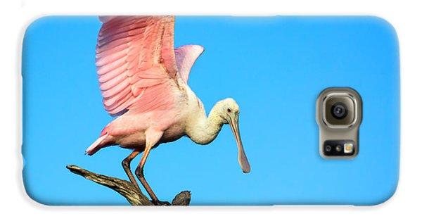 Spoonbill Flight Galaxy S6 Case by Mark Andrew Thomas