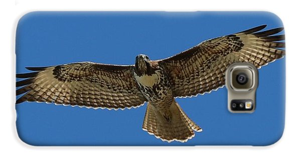 Spread Your Wings  Galaxy S6 Case