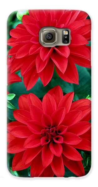 Spring Flowers 5 Galaxy S6 Case