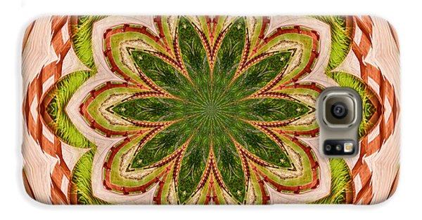 Spring Grasses Mandala Galaxy S6 Case