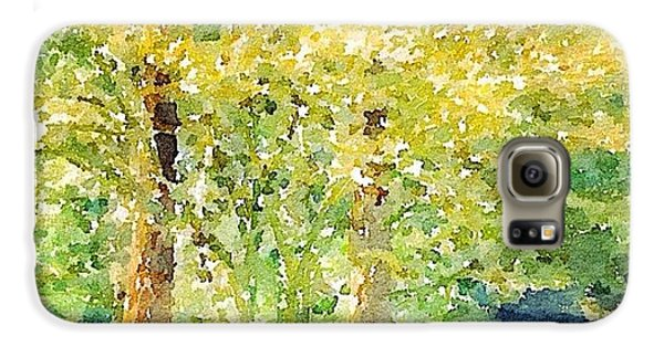 Sunny Galaxy S6 Case - Spring Maples by Anna Porter