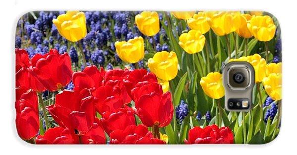 Spring Sunshine Galaxy S6 Case