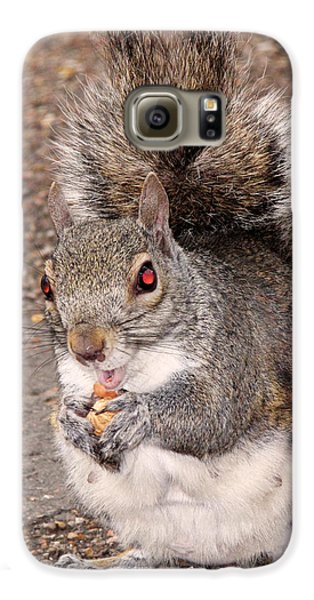 Squirrel Possessed Galaxy S6 Case