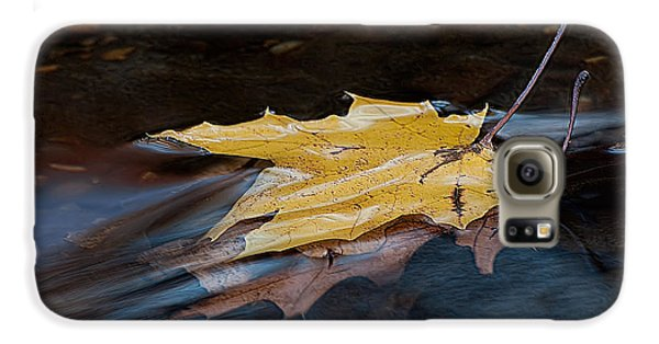 Stacked Autumn Leaves On Water Galaxy S6 Case