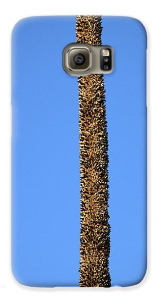 Galaxy S6 Case featuring the photograph Standing Alone by Miroslava Jurcik