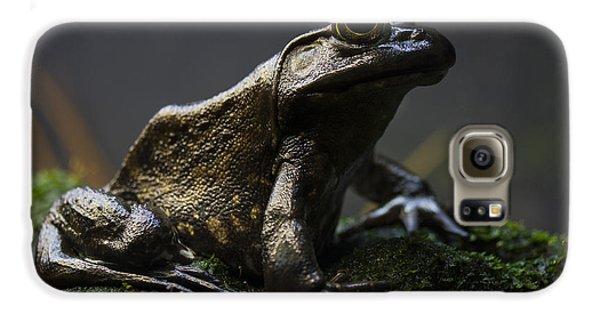 Stone Galaxy S6 Case