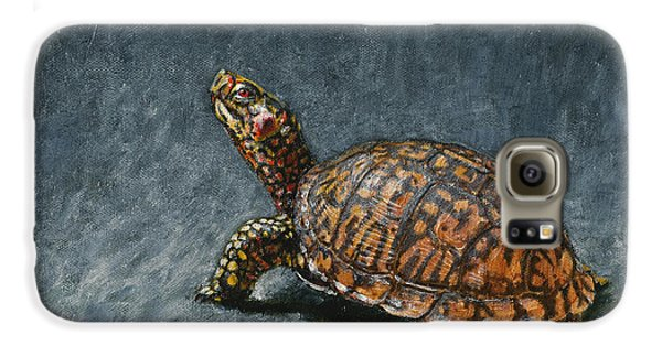 Reptiles Galaxy S6 Case - Study Of An Eastern Box Turtle by Dreyer Wildlife Print Collections