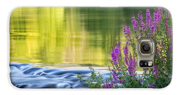 Summer Reflections Galaxy S6 Case